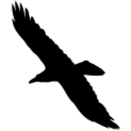 Qrome