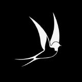 peregrine-lang logo
