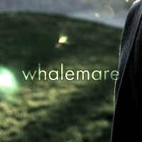 whalemare