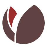 DigitalNZ logo