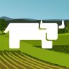 rancher-compose